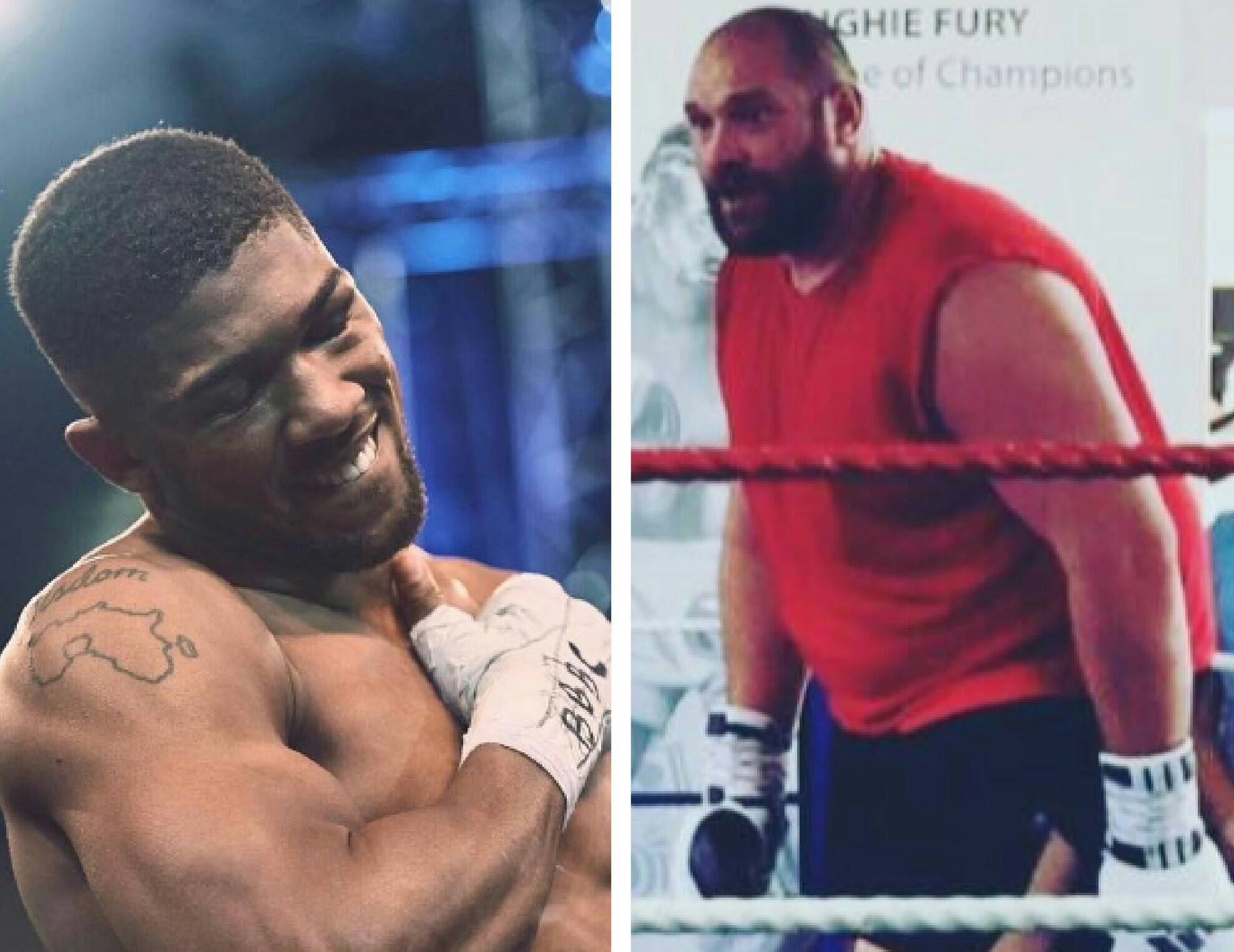 Fury Calls Anthony Joshua 'Plastic Nigerian', Wants A Fight;  Claims: 'I'm More Nigerian'