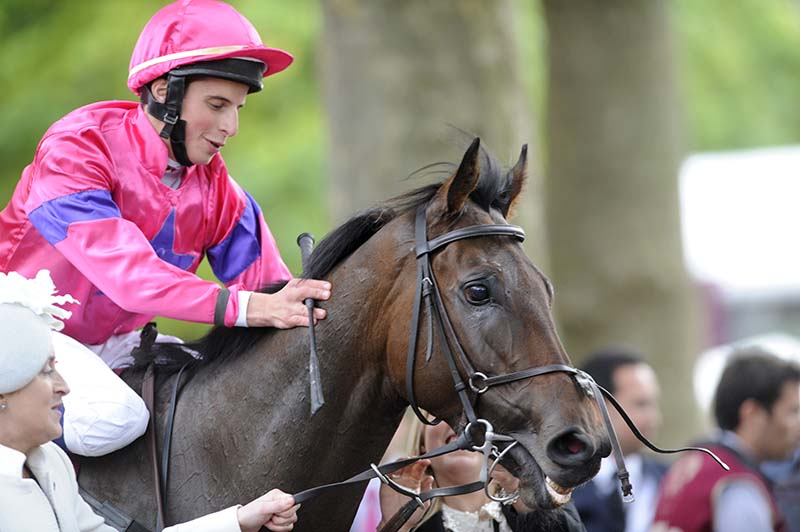 Connections Unsure On Next Gordon Lord Byron Move