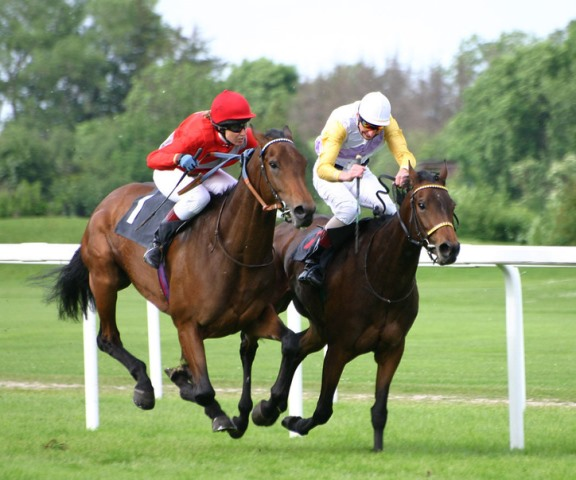 The Most Expensive Horse Races