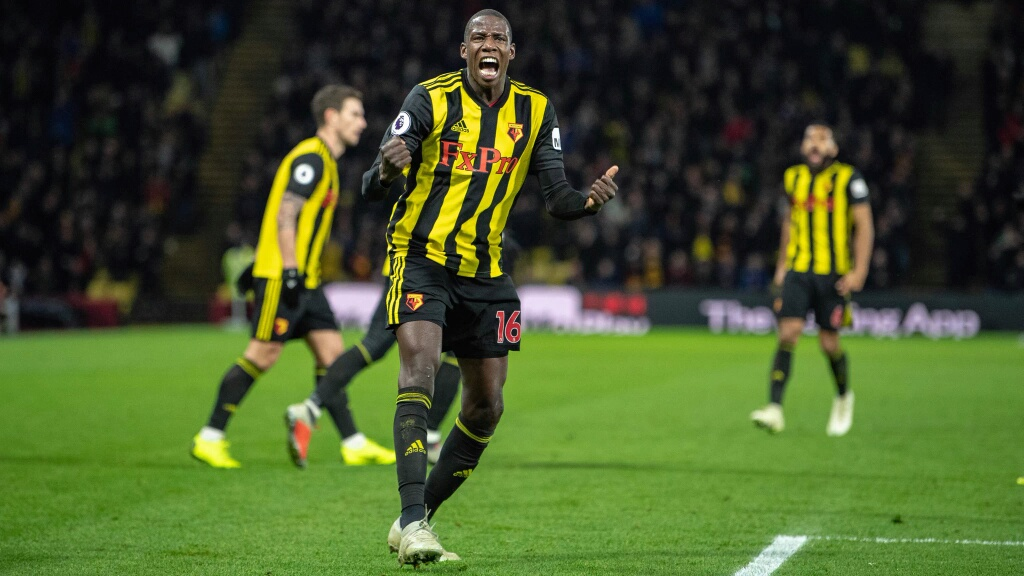 Success Hails Watford's Fighting Spirit In Home Draw Vs Newcastle