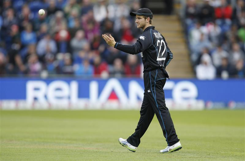 Williamson Looking For More Of The Same