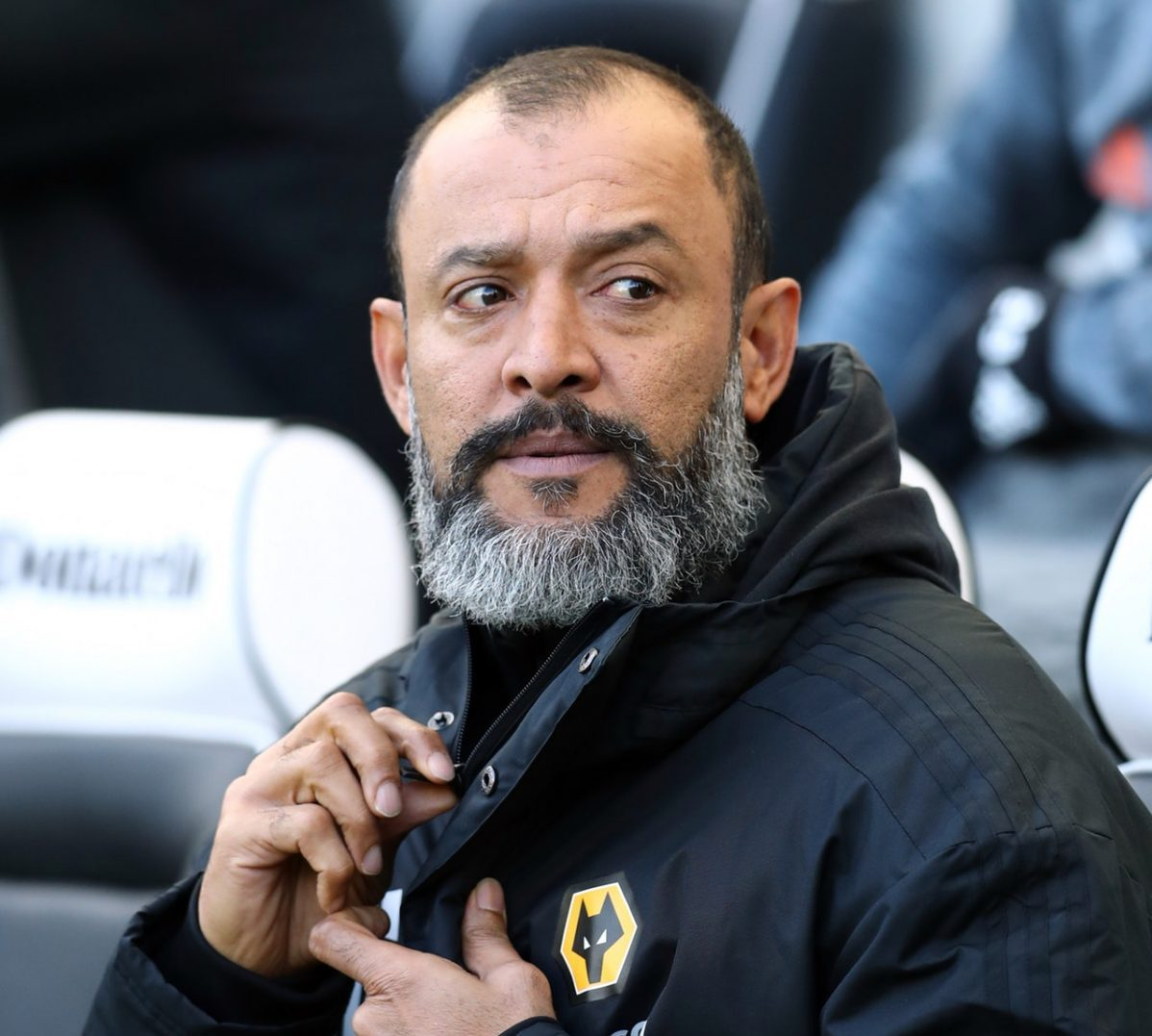 Nuno- Wolves Are 'Growing'