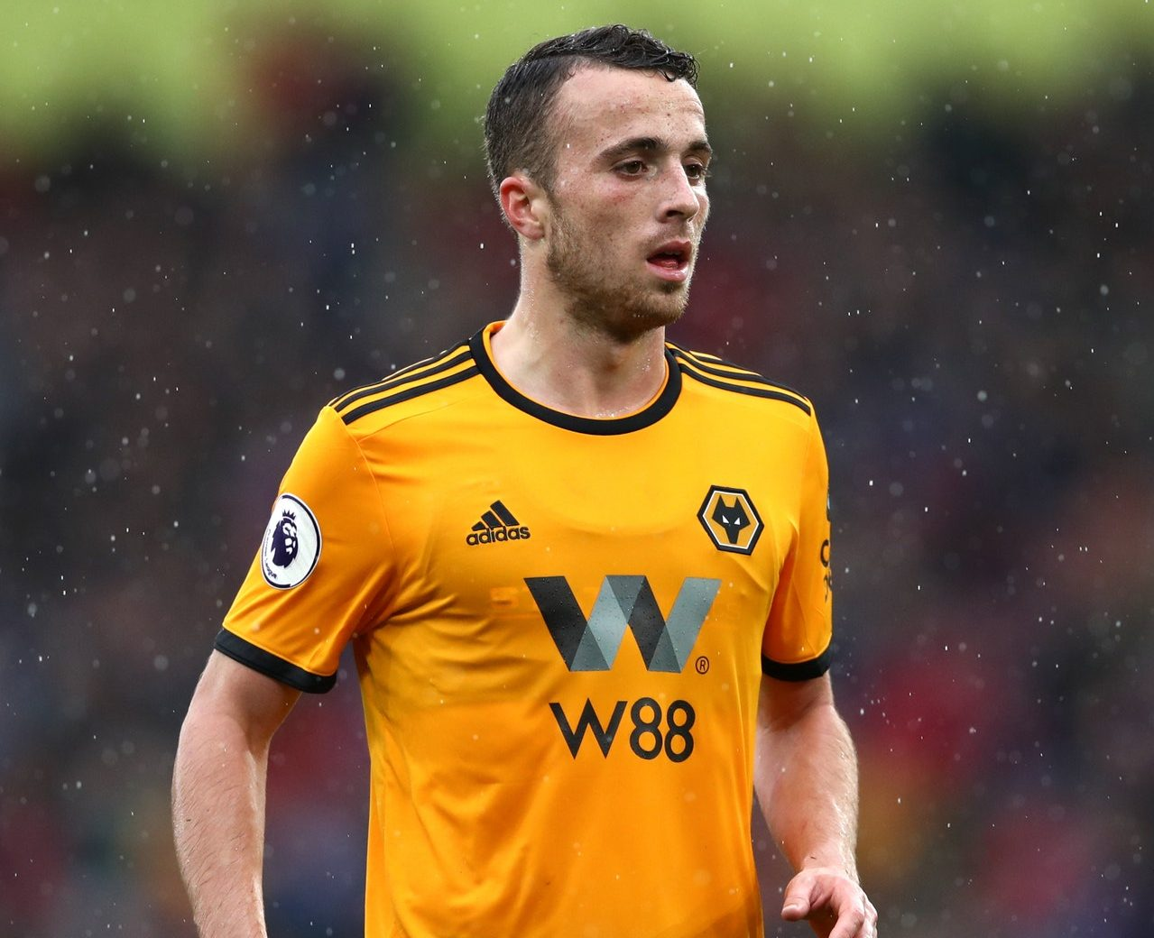 Jota – Wolves Sweating Over Fitness