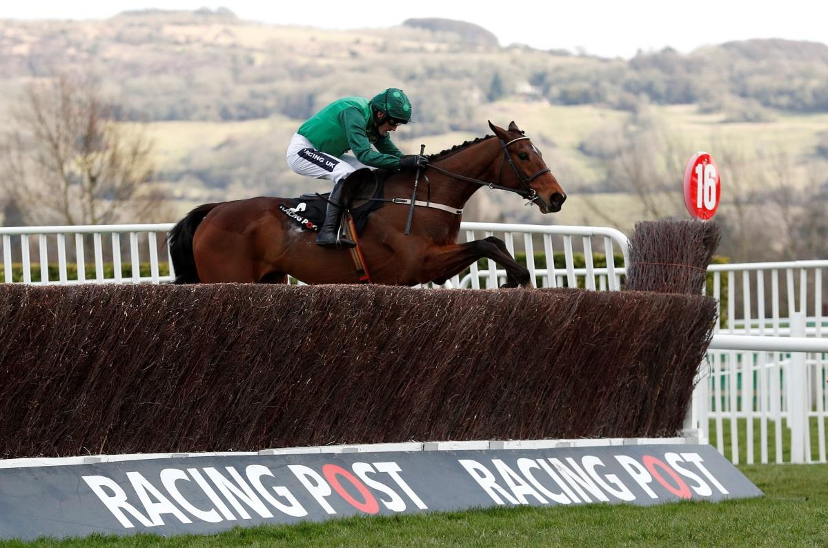 Mullins Duo Declared For Ryanair Chase