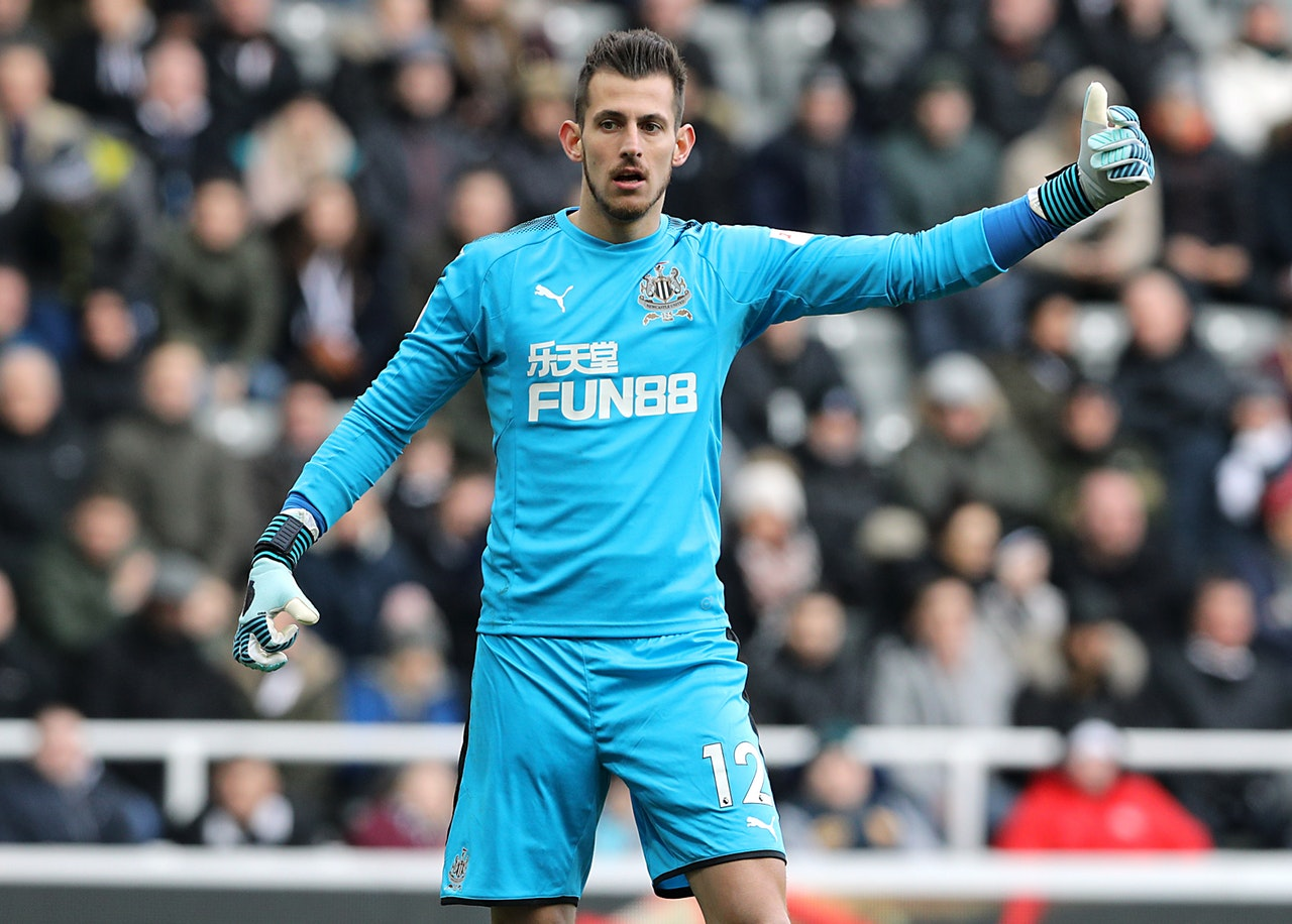 Dubravka Happy In The North