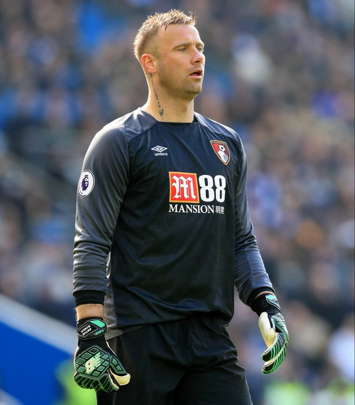 New Boruc Deal Pushes Begovic Closer To Exit
