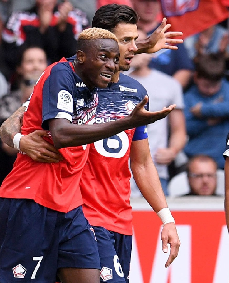Ligue 1: Osimhen Targets Goal No. 5 As Lille Host Angers SCO