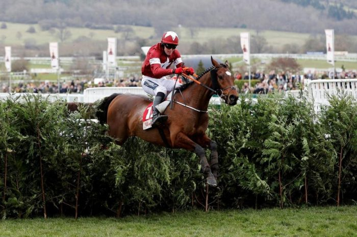 Tiger Roll Set For Aintree Return