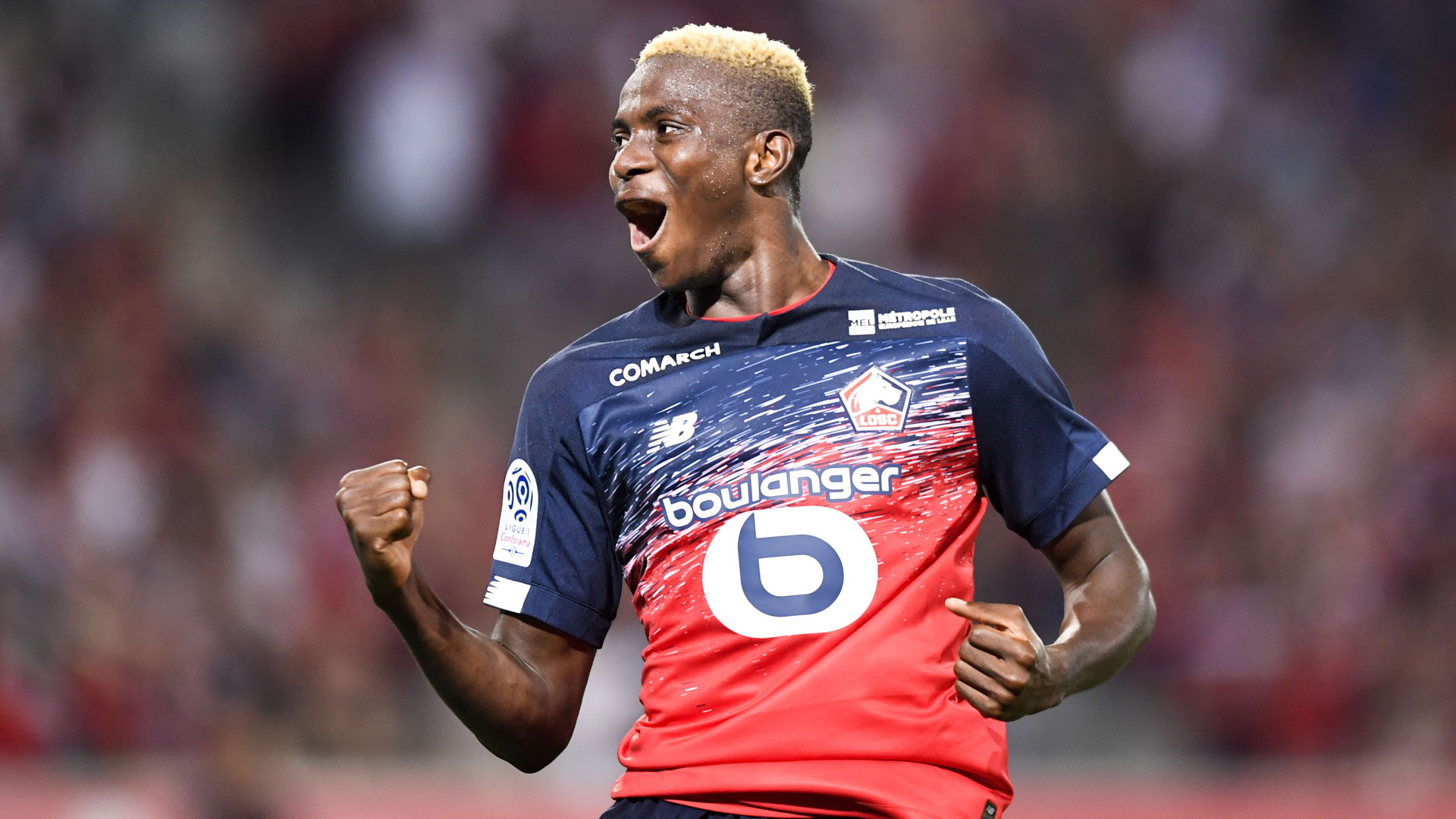 Lille Celebrate Osimhen's 10th League Goal of The Season