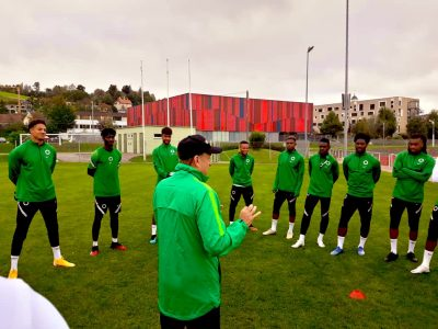 super-eagles-covid-19-international-friendly-gernot-rohr